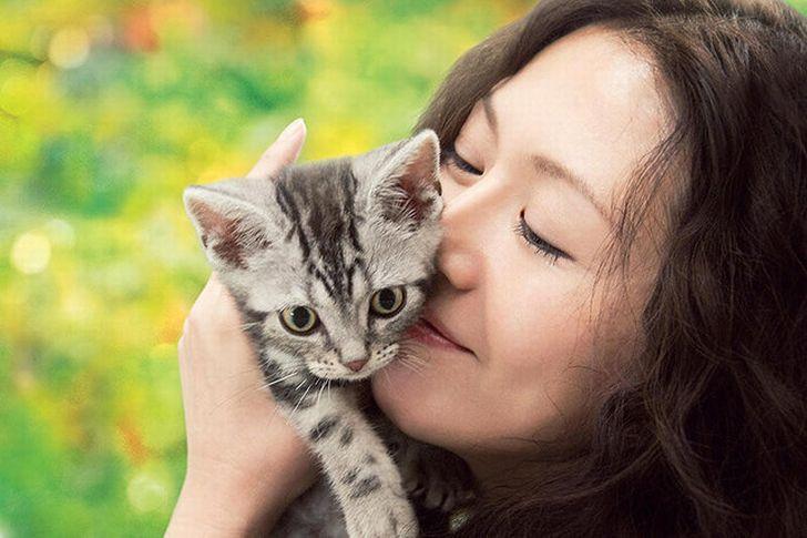『グーグーだって猫である』の動画フル配信を無料で視聴する方法